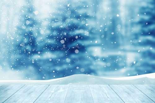 Voetstappen in de sneeuw