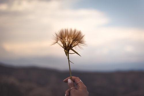Waarom ergens aan vasthouden soms beter is dan loslaten