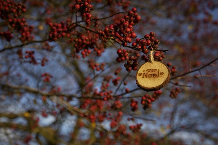 5 gedachten voor een duurzame kerst