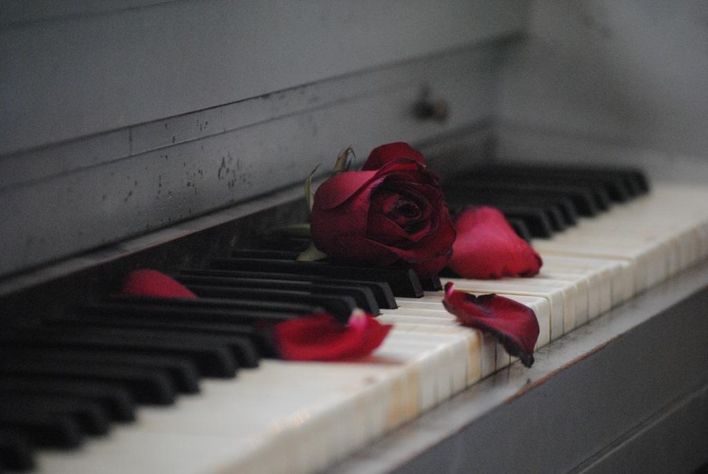 Terugkijken: liedjes over de liefde