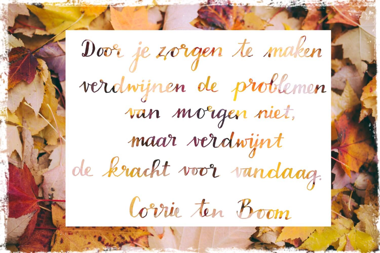 Door je zorgen te maken, verdwijnen de problemen van morgen niet…