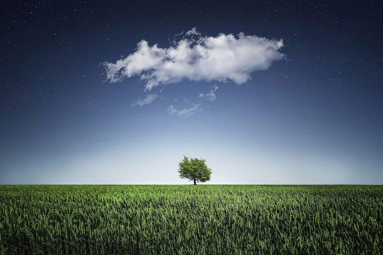 vrijheid-beperkingen-horizin-blog